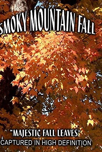 SMOKY MOUNTAIN FALL-