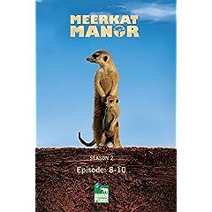 Meerkat Manor Season 2 - Episode: 8-10