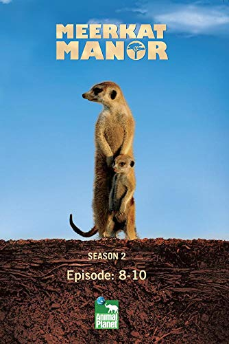 Meerkat Manor Season 2 - Episode: 8-10