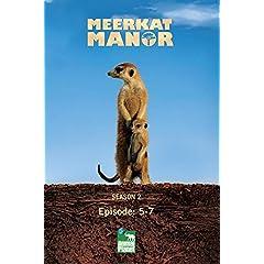 Meerkat Manor Season 2 - Episode: 5-7