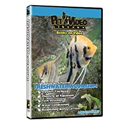 FRESHWATER FISH AQUARIUM DVD!