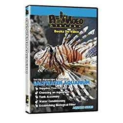 SALTWATER FISH AQUARIUM DVD! Set-up, Aquascape & Maintenance
