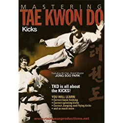 Mastering Tae Kwon Do Advanced Kicks Jump and Flying