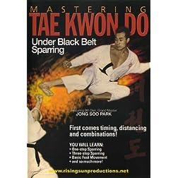 Mastering Tae Kwon Do Under Black Belt Sparring
