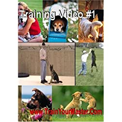 Dog Obedience Video Set #1 (4 DVD Discs)