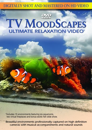 TV Moodscapes: Ultimate Relaxation Video