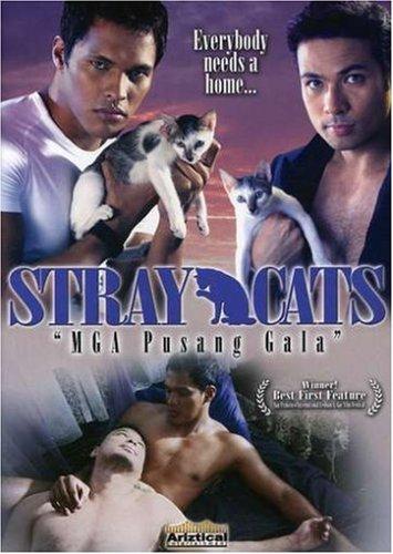 Stray Cats (Sub)