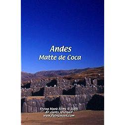 Andes - Matte de Coca