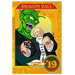 Dragon Ball V.19-21