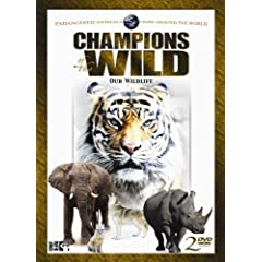 Champions of the Wild: Bengal Tigers & White Rhino
