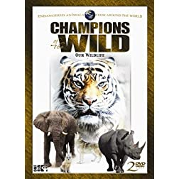 Champions of the Wild: Bengal Tigers & White Rhino
