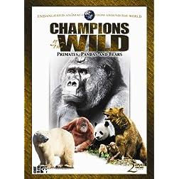 Champions of the Wild: Pandas & Bears (2pc)