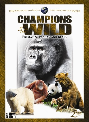 Champions of the Wild: Pandas & Bears (2pc)