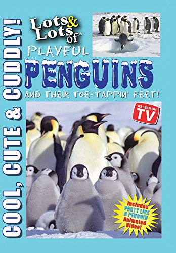 Lots and Lots of Playful Penguins & Their Toe-Tappin Feet