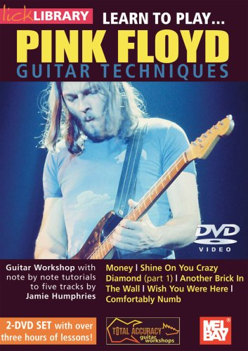 Learn to Play...Pink Floyd Guitar Techniques