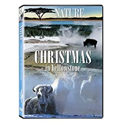 Christmas in Yellowstone
