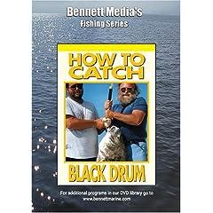 HOW TO CATCH BLACK DRUM.