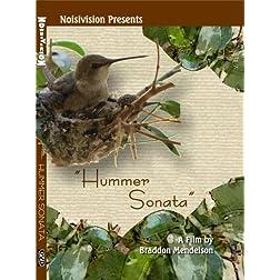 Hummer Sonata