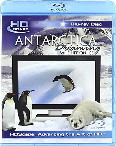 Antarctica Dreaming [Blu-ray]