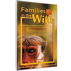 Families In The Wild: Monkeys