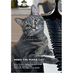 Nora The Piano Cat(tm)