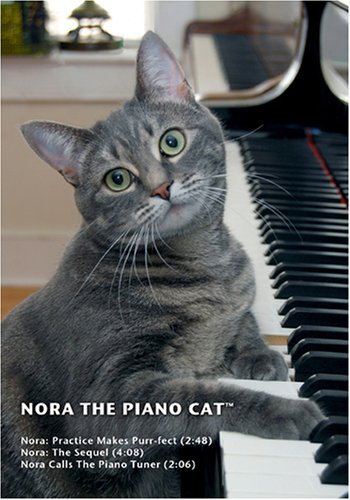 Nora The Piano Cat(tm)