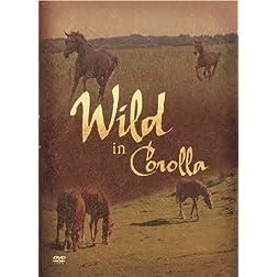 Wild in Corolla