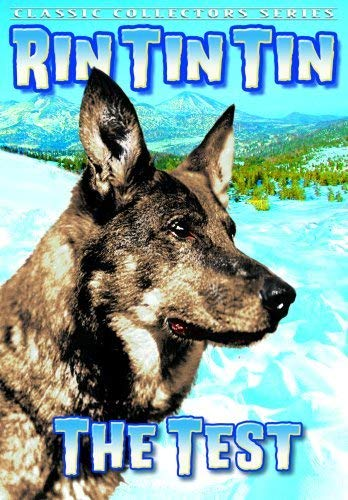 Rin Tin Tin - Test