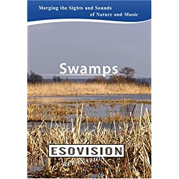 ESOVISION Relaxation  SWAMPS