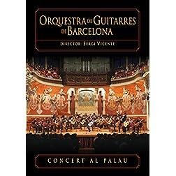 Concert Al Palau