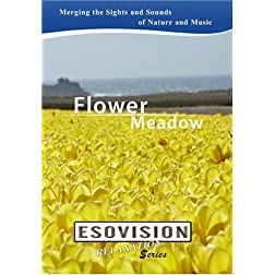 ESOVISION Relaxation  FLOWER MEADOW