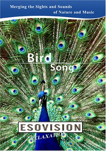 ESOVISION Relaxation  BIRD SONG