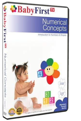 Numerical Concepts