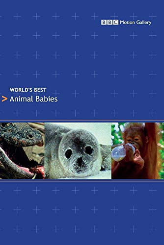 World's Best: Animal Babies
