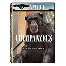 Nature: Chimpanzees - An Unnatural History