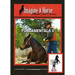Trick Horse Training Fundamentals II