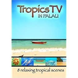 TropicsTV - PALAU: Relaxing Waves, Beaches & Sealife