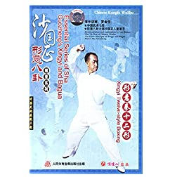 Xingyi Twelve-style Boxing