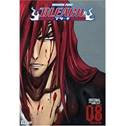 Bleach, Volume 8: The Entry (Episodes 29-32)
