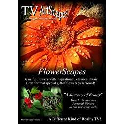 TV Artscapes............FlowerScapes Vol II