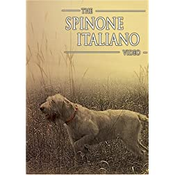 The Spinone Italiano