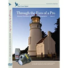 Through the Eyes of a Pro:  Advanced Techniques for Nikon DSLR Photographers; Volume 2