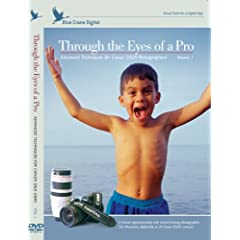 Through the Eyes of a Pro:  Advanced Techniques for Canon DSLR Photographers, Volume 1