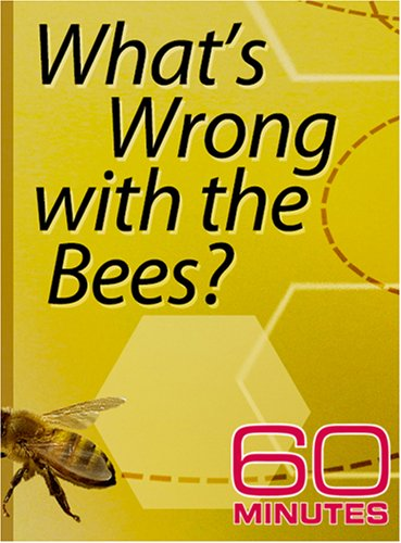 60 Minutes - What's Wrong with the Bees? (October 28, 2007)