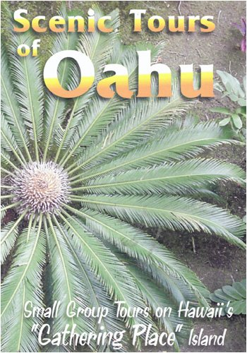 Scenic Tours Of Oahu