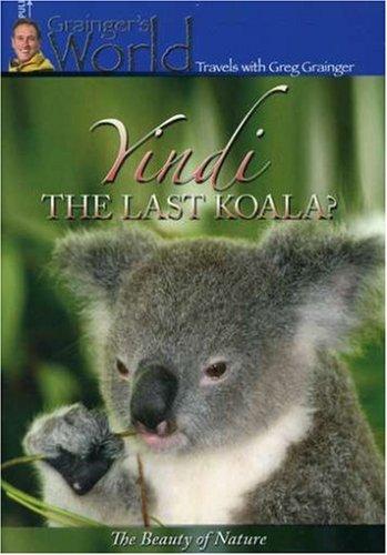 Yindi the Last Koala