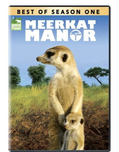 Season-Best of Meerkat Manor