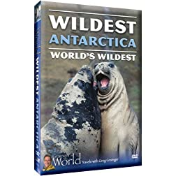 Wildest Antarctica