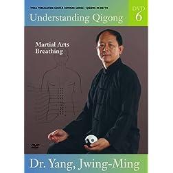 Understanding Qigong DVD6: Martial Arts Qigong Breathing (YMAA Chi Kung)