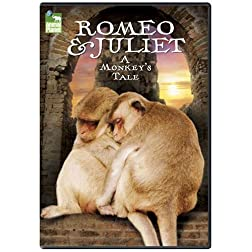 Romeo and Juliet: A Monkey's Tale